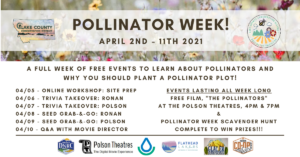 Virtual Workshop: Pollinator Plot Site Prep Explained